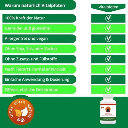 100% Natur natürluch reine Extrakte pflanzlich ohne Zusatzstoffe Kapseln Moringa