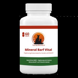 Mineralstoffe Vitamine gesund hund Katze Moringa Barf