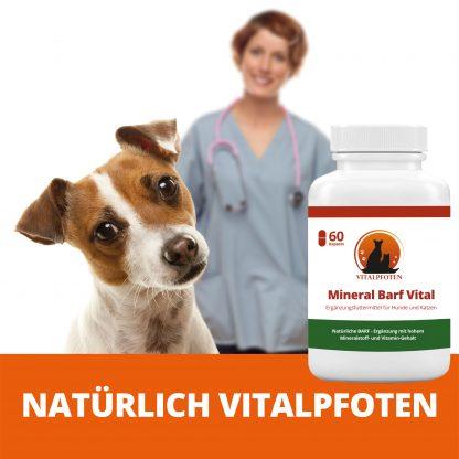 Vitalstoffe Vitamine für Hund Katze Haustiere pflanzlich