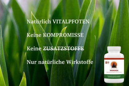 Moringa Weizengras Vitamine Fell Vitalpoften Kapseln