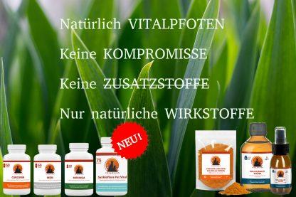 Kapseln Pulver Produkte Futterergänzung Vitamine Mineralien Tier HUnd Katze